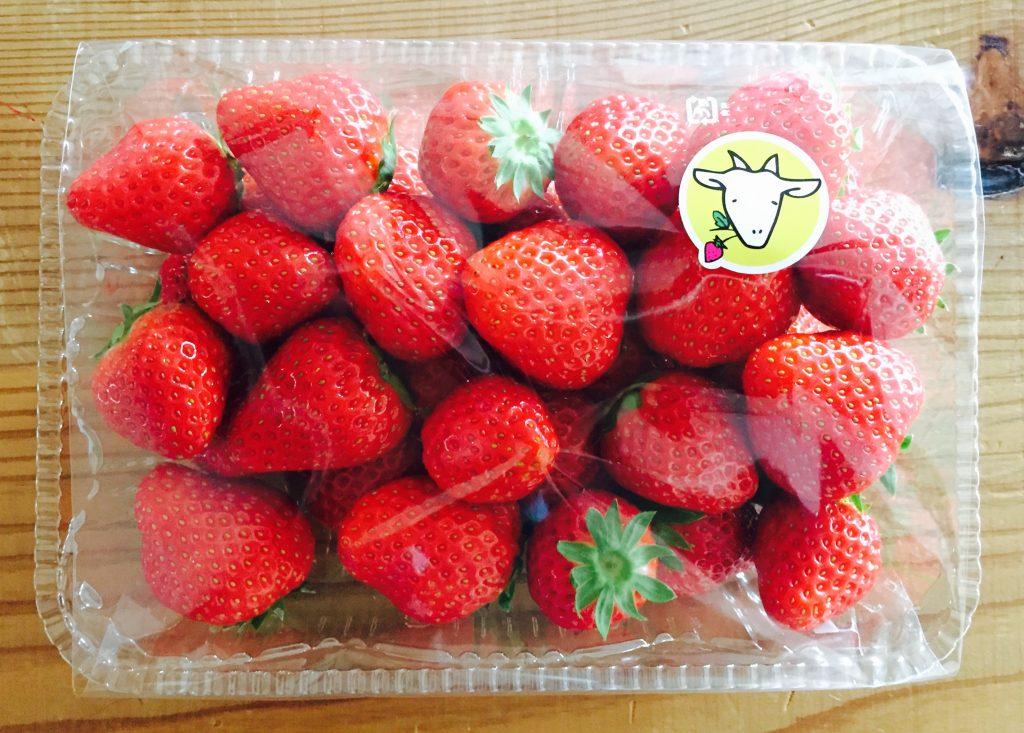 島津さんの苺
