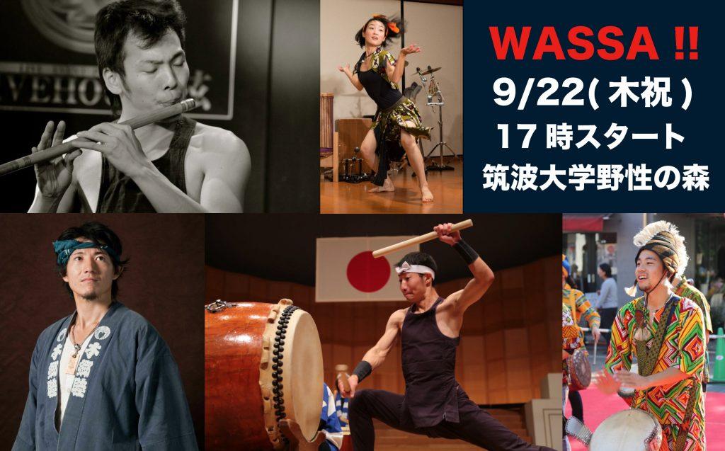 wassa1