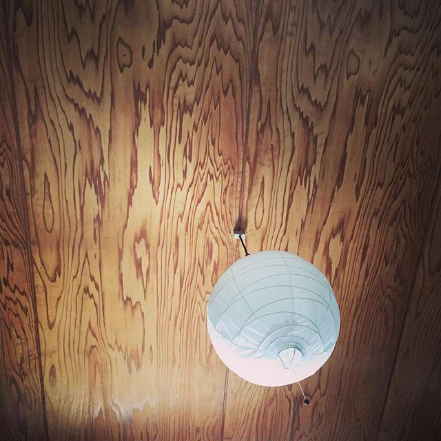 久しぶりに発熱。布団に入ってボーッと天井を眺めていると、色んな模様が見えてくる。