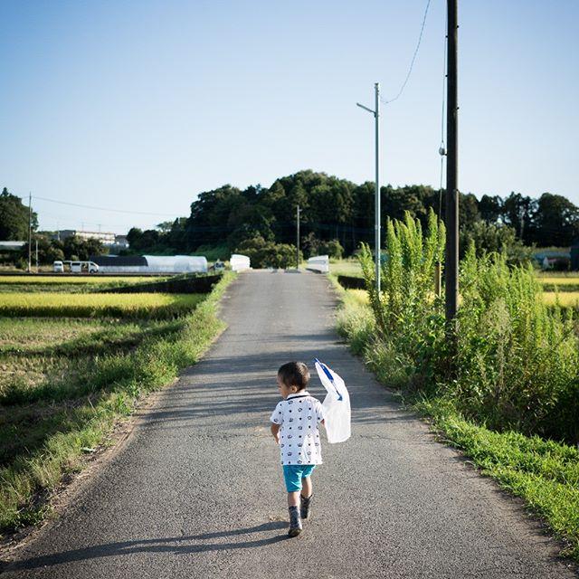 #お散歩 #snap #スナップ #夏  #family #instagramjapan #tokyocameraclub #igersjp #team_jp_ #reco_ig #hueart_life #rsa_social #indies_gram #whim_life #lifeispeople #as_archive #japan_daytime_view